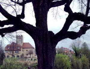 Immobiliengutachter Lauffen am Neckar