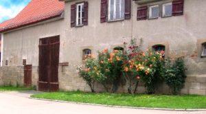 Immobiliengutachter Metzingen
